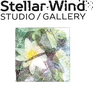 Stellar-Wind_2021